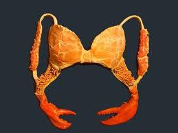 silly bras 3 - Copy